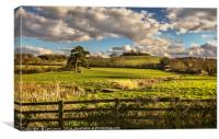 Round Hill From Little Wittenham, Canvas Print