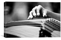 Guzheng Musical Instrument, Canvas Print