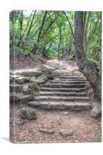 The Path to Nojoqui Falls, Canvas Print