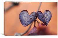 Natures Heart, Canvas Print