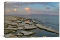 Salton Sea, Canvas Print