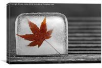 Cool Leaf, Canvas Print