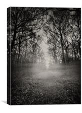 Haunted Wood, Canvas Print