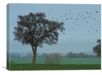 Birds Of A Feather, Canvas Print