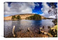 The old steamboat pier, Loch Ossian, Canvas Print