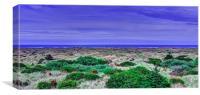 Pacific Northwest Beach , Canvas Print