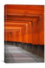 Fushimi Inari Shrine, Canvas Print