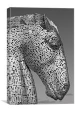 Black and White Kelpie, Canvas Print