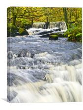 Waterfall, Garnwent Forestry Centre, Canvas Print