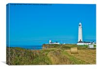 Nash Point Lighthouse, Canvas Print