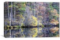 Autumn at Loch Garten, Canvas Print