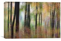 Ashton Court, Canvas Print