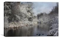 The nature of Winter, Canvas Print
