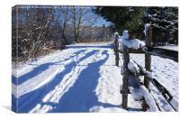 Winter Path, Canvas Print