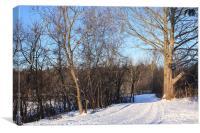 Scenic Winter, Canvas Print