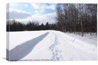 Winter Tracks, Canvas Print