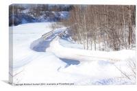 Winter path and bridge, Canvas Print