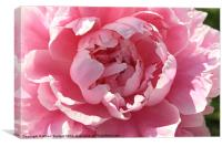 Into my flower, Canvas Print