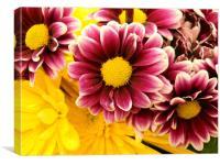 Flower time, Canvas Print