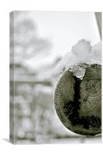 Ice Wood, Canvas Print