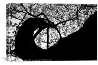 Spiral Cherry Blossom Tree, Canvas Print