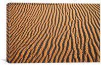 Dune detail at Sunrise, Canvas Print