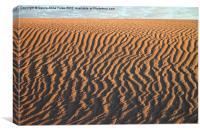 Slithering Sand after Sunrise, Canvas Print