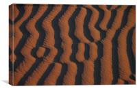 Dune Pattern Detail, Canvas Print