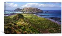 Macquarie Island and The Research Station, Canvas Print