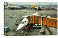 Concorde at Heathrow London, Canvas Print