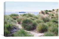 Shoreline Vegetation ob Saunders Island, Canvas Print