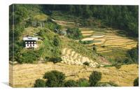 Terraces in the High Valleys, Bhutan, Canvas Print