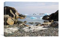 Cierva Cove Antarctica, Canvas Print