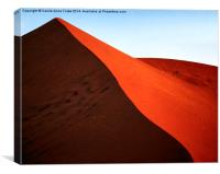 Sculptural Dune, Namib Desert, Namibia, Canvas Print