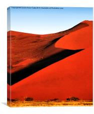 Bold Sculptural Dune, Namibia, Canvas Print