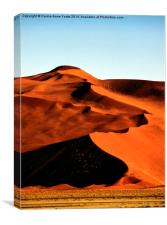 Dramatic Dunes, Namibia, Canvas Print