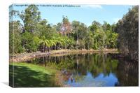 Mount Coot-tha Botanic Gardens, Brisbane, Canvas Print