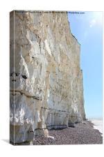 Seven Sisters Cliffs At Birling Gap , Canvas Print