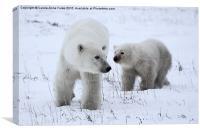 Polar Bear & Her Cub, Churchill, Canada, Canvas Print