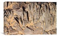 Southern Gobi Mongolia, Canvas Print