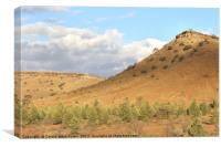 The Great Wall of China, Flinders Ranges, Canvas Print