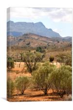Arkaba Homestead & Elder Range, Canvas Print
