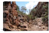 Sacred Canyon, Flinders Ranges, Canvas Print