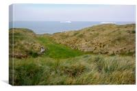Wandering Albatross Nesting Habitat, Canvas Print