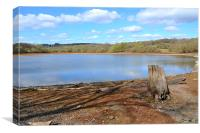 Low Darwell Reservoir, Canvas Print