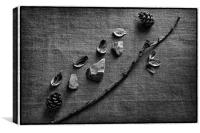 Twigs Still Life, Canvas Print