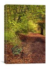 Autumn Bench, Canvas Print