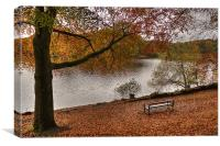 Knypersley Autumn View, Canvas Print
