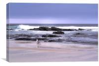 Cornish Beach 2, Canvas Print