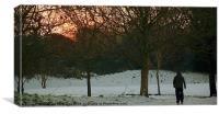 Winter walk Colour, Canvas Print